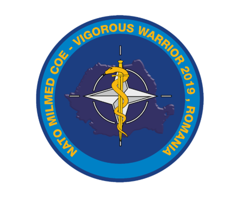 "Raport privind activitatea asistenților sociali la ""VIGOROUS WARRIOR 2019"""