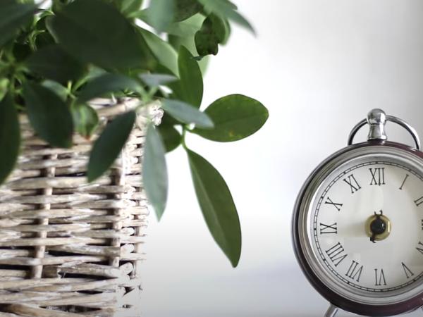 Curs de pregătire continuă – ONLINE – Managementul serviciilor sociale, 15-16-17 iulie 2020 (10:00 – 12:00)
